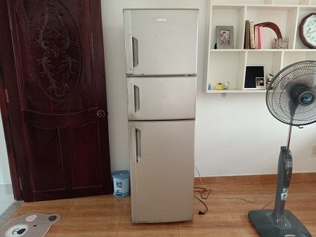 Tủ lạnh  ELECTROLUX 247 Lít ETB2603PA-RVN cũ SP014467