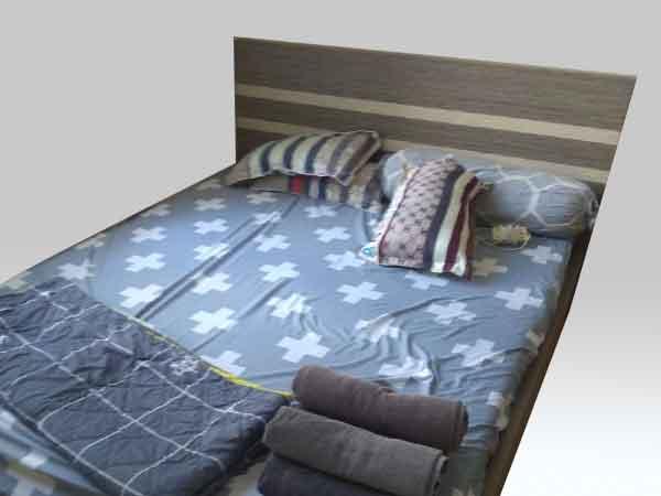 Giường ngủ SP012283