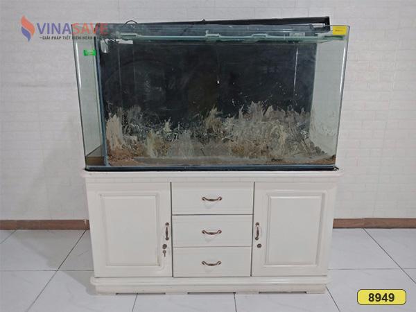 Hồ cá cảnh cũ SP008949