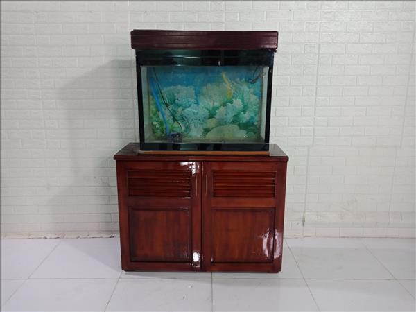 Tủ hồ cá cũ SP009774